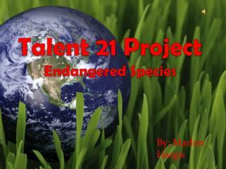Talent 21 Project Endangered Species