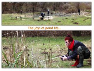 The joys of pond life…