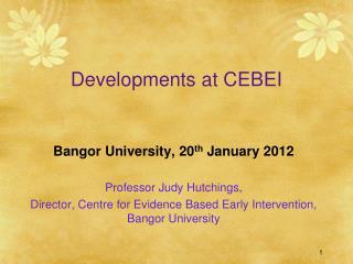 Developments at CEBEI