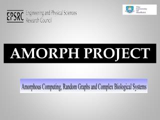 AMORPH PROJECT