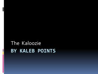 By kaleb points