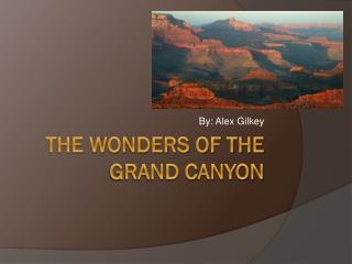 The wonders of the grand canyon