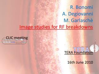 R. Bonomi  A. Degiovanni  M. Garlaschè Image studies for RF breakdowns