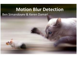 Motion Blur  Detection