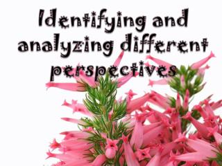 Identifying  and  analyzing different perspectives