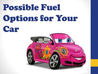 Possible Fuel Options for Your Car