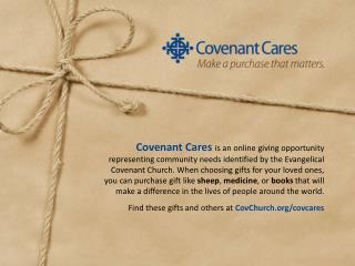 Covenant Cares slide
