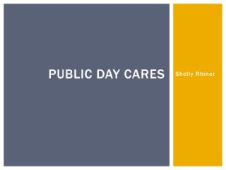 Public Day Cares