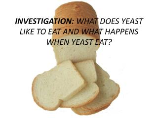 INVESTIGATION:  WHAT DOES YEAST LIKE TO EAT AND WHAT HAPPENS WHEN YEAST EAT?