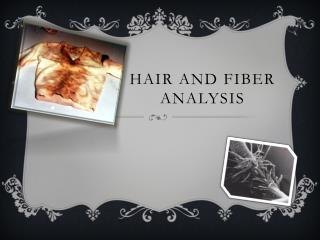 Hair and Fiber Analysis