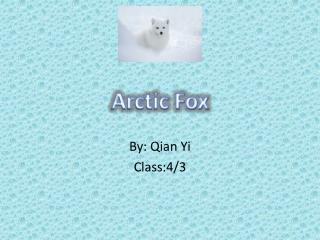 By:  Qian  Yi Class:4/3