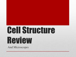 Cell Structure Review