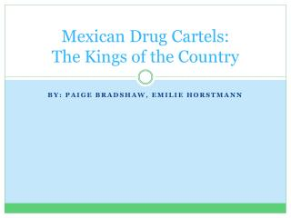 Mexican Drug Cartels: The Kings of the Country