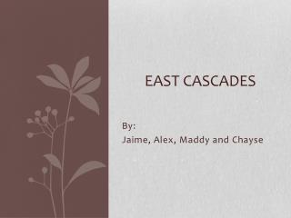 East Cascades