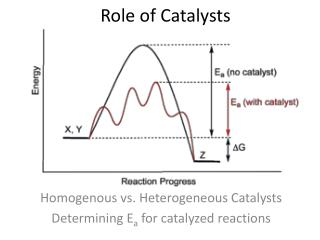 Role of Catalysts