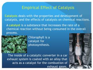 Empirical Effect of Catalysis
