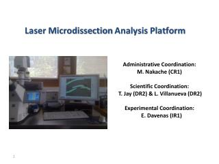 Laser Microdissection  Analysis  Platform
