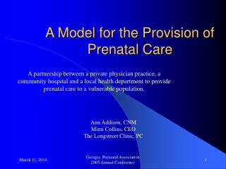 A Model for the Provision of Prenatal Care