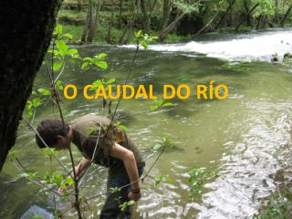 O CAUDAL DO RÍO