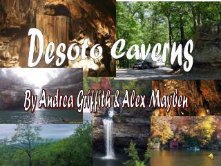 Desoto Caverns