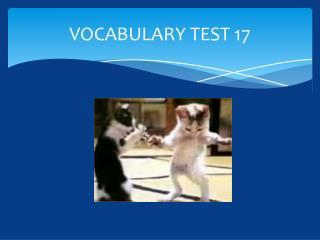 VOCABULARY TEST 17