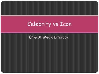 Celebrity  vs  Icon