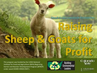 Raising Sheep & Goats for Profit