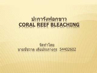 ปะการังฟอกขาว   Coral Reef Bleaching
