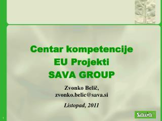Centar kompetencije EU Projekti SAVA GROUP