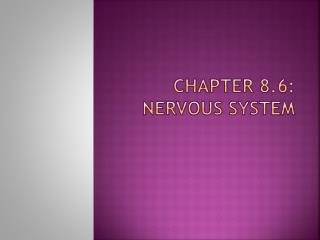Chapter 8.6:  Nervous system