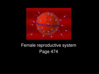 Female reproductive system Page 474