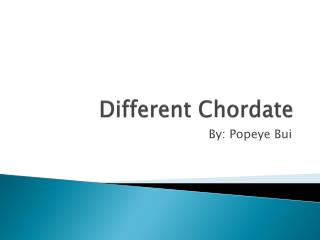 Different Chordate