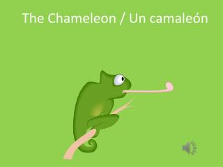 The Chameleon / Un  camaleón