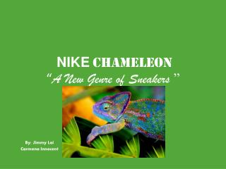 "NIKE Chameleon "" A New Genre of Sneakers  """