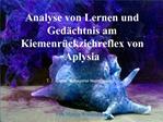 Analyse von Lernen und Ged chtnis am Kiemenr ckziehreflex von Aplysia