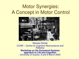 Motor Synergies: A Concept in Motor Control