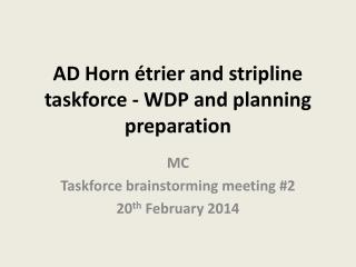 AD Horn �trier and stripline taskforce - WDP and planning preparation