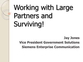 Working with Large Partners and Surviving!