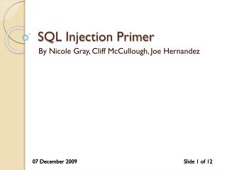 SQL Injection Primer