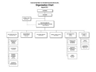 TEXAS DEPARTMENT OF INFORMATION RESOURCES (DIR) Organization  Chart August 2013