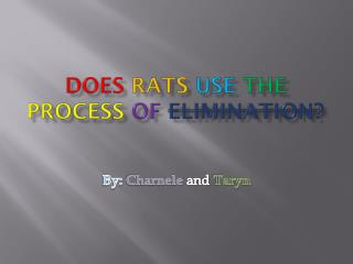 Does Rats use the process of elimination?