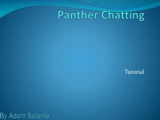 Panther Chatting