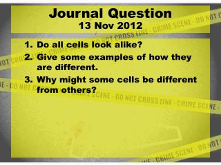 Do all cells look alike? Give some examples of how they are different.