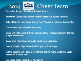 2014           Cheer Team