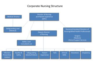 Corporate Nursing Structure