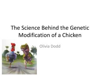 The Science Behind the Genetic Modification of a Chicken