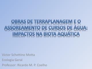 Obras de terraplanagem e o assoreamento de cursos de água: impactos na biota aquática