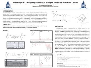 Modeling N–H・・・O Hydrogen Bonding in Biological  Tyrosinate -bound  Iron  Centers