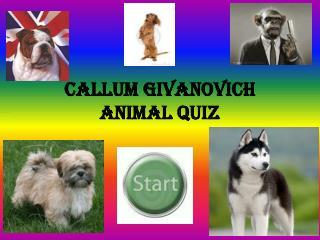 Callum givanovich animal quiz