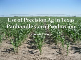 Use of Precision Ag in Texas Panhandle Corn Production